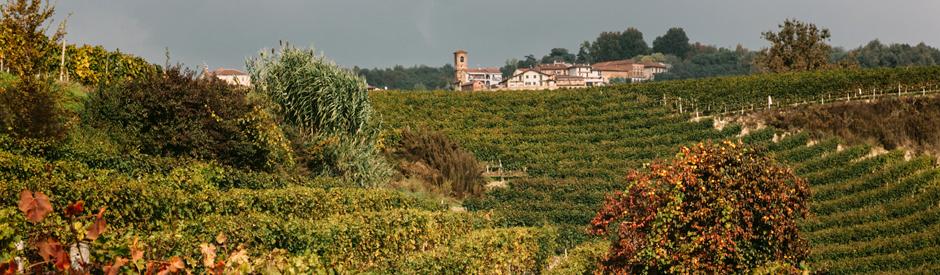 Roero Arneis Giovanni Almondo mooiste Italiaanse witte wijn volgens Forbes