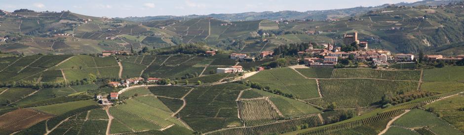 Gaja single vineyard wijnen Piemonte 2016 & 2017 van ongeëvenaarde kwaliteit!