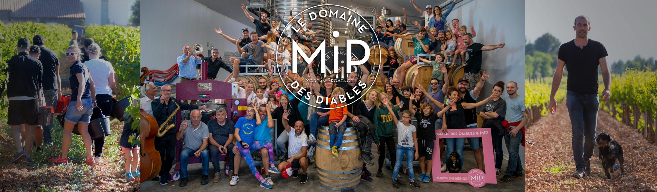 Het voorjaar kan beginnen, want MIP-Rosé 2020 is binnen!